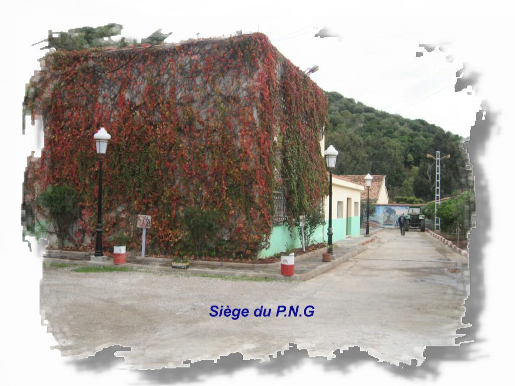 png05.jpg