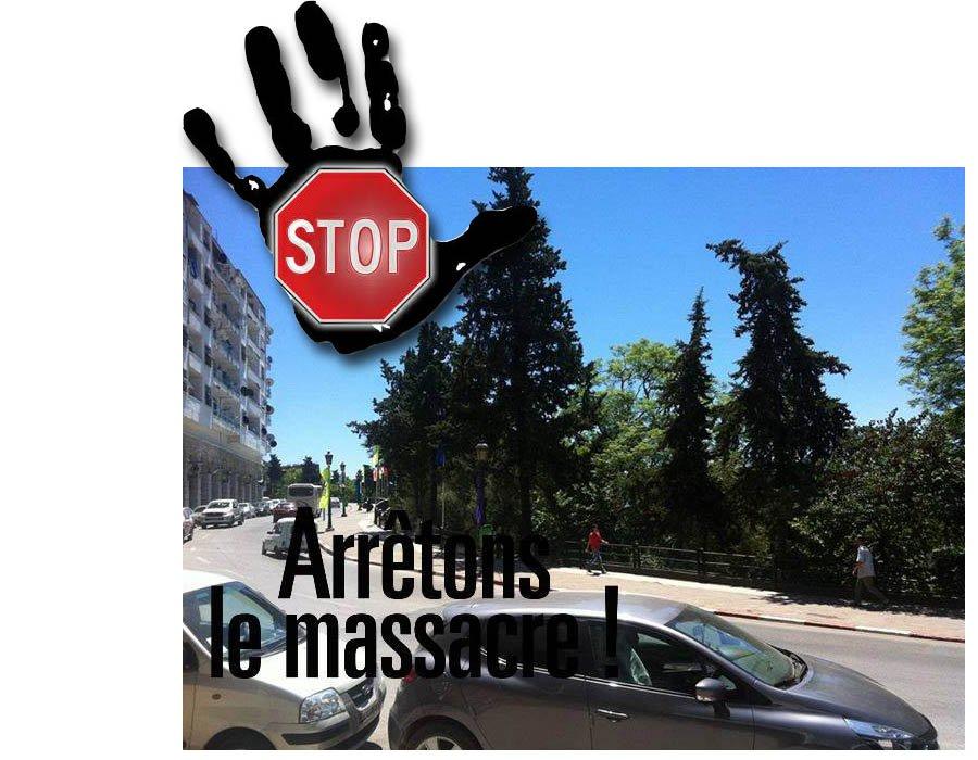 Massacre_Espace_Vert